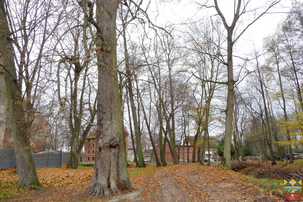 Park wokół zamku - Karłowice.jpeg