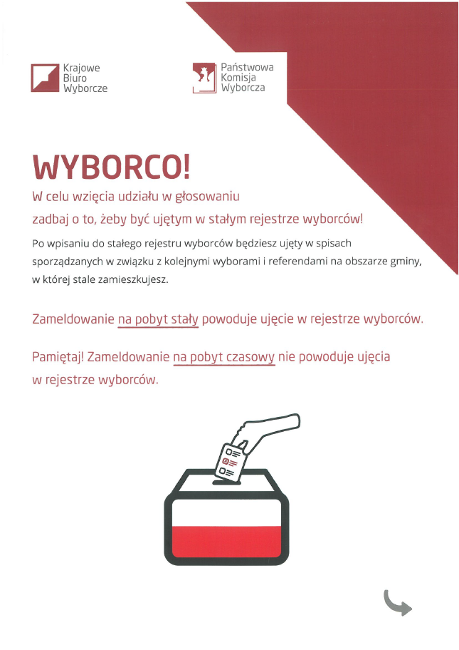 Wyborco_1.png