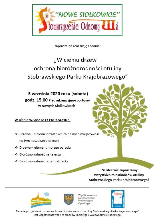 Plakat promujący wydarzenie w Nowych Siołkowicach