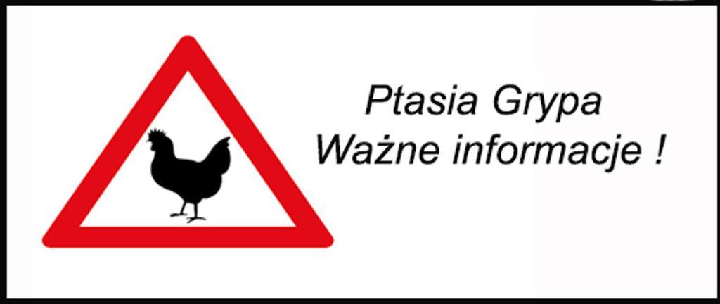 Logotyp ptasiej grypy
