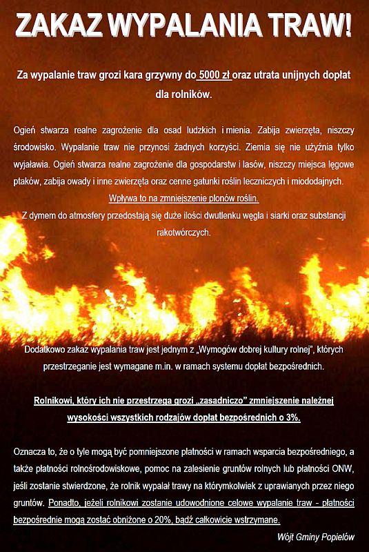 Wypalanie traw-800.jpeg