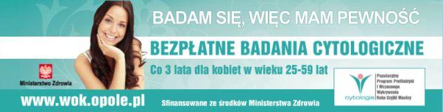 wok_opole.pl.jpeg