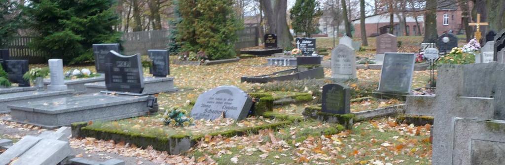 cmentarze.jpeg