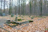 Cmentarz ewangelicki - Popielowska Kolonia.jpeg