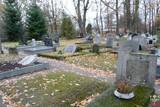 Cmentarz ewangelicki - Lubienia.jpeg