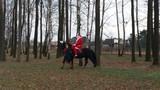 Mikołaj na koniu.jpeg